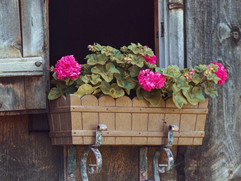Comment créer une jardinière éco